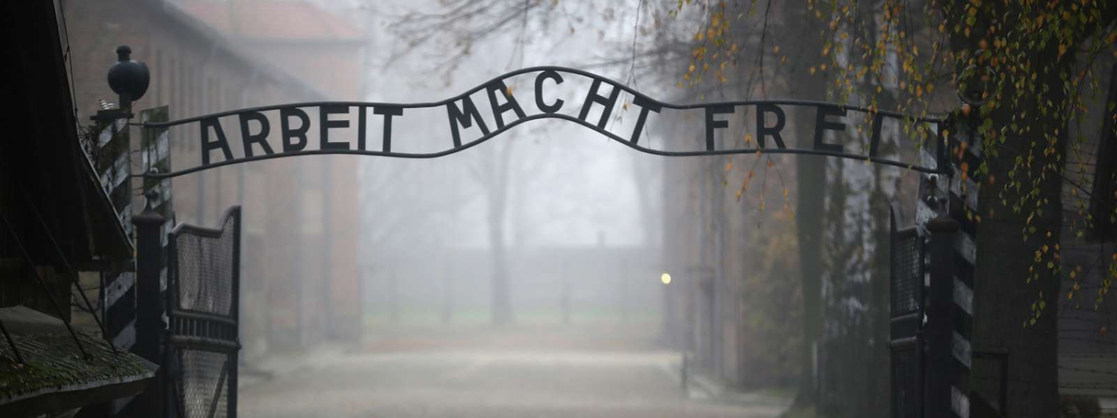 Ми по таборах і тюрмах: українські націоналісти у нацистських концтаборах